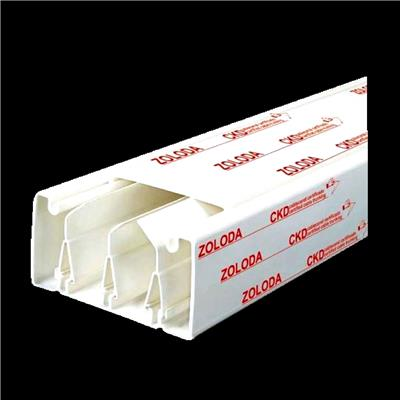 CABLECANAL CIEGO B100XH50 5-ADH P-TAB BLANCO TIRA X 2 MTS
